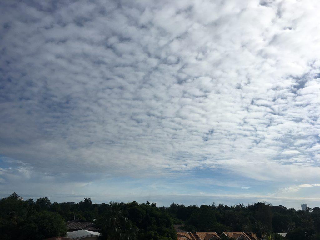 セブ島にもウロコ雲が・・・。